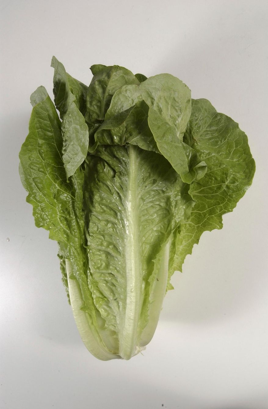 FILE - This undated photo shows romaine lettuce in Houston. On Wednesday, May 2, 2018, U.S. health officials said California reported the first death in a national food poisoning outbreak linked to romaine lettuce. (Steve Campbell/Houston Chronicle via AP)