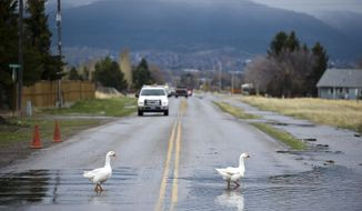 A scene from the Helena Valley Monday, April 30, 2018, where Ten Mile Creek jumped its banks and caused flooding in some residential areas.  (Thom Bridge/Independent Record via AP)