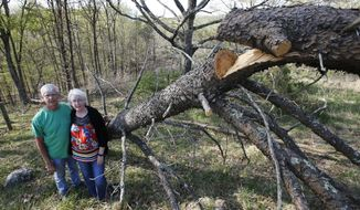 In this Thursday, May 3, 2018 photo, Becky and Roger Crabtree pose next to a downed tree on the route of the proposed Mountain Valley Pipeline on their property in Lindside, W.Va. The Crabtree's are part of a coalition of Virginia and West Virginia landowners opposed to what they call an unconstitutional land grab and have taken their fight to a federal appeals court. (AP Photo/Steve Helber)