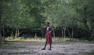 FILE - In this Friday, March 23, 2018 file photo, a young Maasai herder boy stands in the bush at the end of the day near Mikumi National Park in Tanzania. A U.S.-based group said Thursday, May 10, 2018 that tens of thousands of Tanzania's ethnic Maasai people have been left homeless after their houses were burned to keep the savannah open for tourism benefiting foreign safari companies. (AP Photo/Ben Curtis, File)