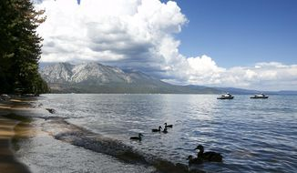 FILE - In this Tuesday, Aug. 22, 2017, file photo, a family of ducks swims along the shore of South Lake Tahoe near the site of the 21st Annual Lake Tahoe Summit, in South Lake Tahoe, Calif. Voters in California could approve spending $127 million for projects in Lake Tahoe through a series of ballot measures in 2018. The California Clean Water and Safe Parks Act, which would approve $4.1 billion for spending, will be on the June 5 primary ballot. The Water Supply and Water Quality Act, for $8.9 billion, is scheduled for the Nov. 6 election. (AP Photo/Rich Pedroncelli, File)