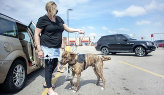 Sandra Ewing gets her service dog, Arrow, out of a car before shopping at Festival Foods in Janesville.  (Angela Major/The Janesville Gazette via AP)