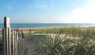 This undated photo provided by the Cape Cod Chamber of Commerce shows Coast Guard Beach on Cape Cod in Massachusetts. Coast Guard Beach is No. 5 on the list of best beaches for the summer of 2018 compiled by Stephen Leatherman, also known as Dr. Beach, a professor at Florida International University. (Margo Tabb/Cape Cod Chamber of Commerce via AP)
