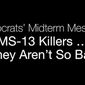 The Republican Party released a new ad on May 29, 2018, which lambasted House Minority Leader Nancy Pelosi, D-Calif., as an apologist for violent MS-13 members. (Image: Facebook, GOP screenshot)