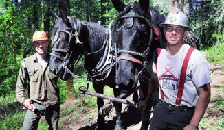 In this May 18, 2018, photo, Nick Rodgers, left, and his nephew Bennett Rodgers pose with Percheron team Rook and Jody and have been horse logging in Cathedral Hills Park outside of Grants Pass, Ore. (Timothy Bullard/Grants Pass Daily Courier via AP)