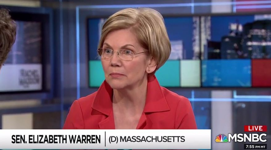 """Massachusetts Sen. Elizabeth Warren discusses midterm elections with MSNBC's Rachel Maddow, June 14, 2018. The Democrat said she lives """"in terror"""" every day of what might happen if her party fails to resonate with voters. (Image: MSNBC screenshot)"""