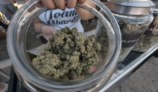 This Saturday, Nov. 11, 2017 photo a vendor shows one of an assortment of marijuana strains during the High Times Harvest Cup in San Bernardino, Calif. The first time in Southern California, the Harvest Cup competition and festival celebrated the best cannabis cultivated this season. (AP Photo/Richard Vogel)