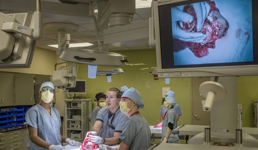 In this June 15, 2018 photo, Jump Trading Simulation and Education Center anatomical skills  coordinator Shannon Egli, at center in foreground, uses a pig's heart, lungs and esophagus to introduce undergraduate college to students who have an interest in medicine to a variety of roles in the clinical environment. in Peoria, Ill. Sponsored by the University of Illinois College of Medicine Peoria and Jump Simulation, the two-week program is a chance to show prospective medical students the great learning environment available in Peoria. (David Zalaznik/Journal Star via AP)