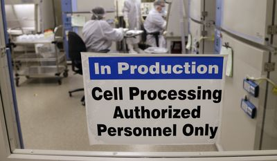 This photo taken March 29, 2017, shows the cell processing facility at the Fred Hutchinson Cancer Research Center where workers create customized cellular immunotherapies for patients, genetically engineering their own immune system's T cells into better cancer killers.  (AP Photo/Elaine Thompson)