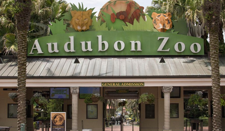 The Audubon Zoo closed after a jaguar escaped from its habitat and killed six animals, according to a release from zoo officials, Saturday, July 14, 2018 in New Orleans. (Brett Duke/The Times-Picayune via AP)