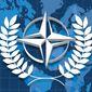 Preservation of the NATO Treaty Illustration by Linas Garsys/The Washington Times