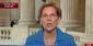 Elizabeth Warren MSNBC.jpeg