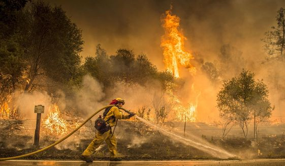 A Cal Fire firefighter waters down a back burn on Cloverdale Rd., near the town of Igo, Calif., Saturday, July 28, 2018. The back burn kept the fire from jumping towards Igo, Calif. Scorching heat, winds and dry conditions complicated firefighting efforts. (Hector Amezcua/The Sacramento Bee via AP)