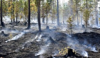 A wildfire at Alvdalen field in Sarna, central Sweden, Thursday July 26, 2018. Several forest fires have been raging in Sweden as a result of hot and dry weather. (Maja Suslin/TT via AP)