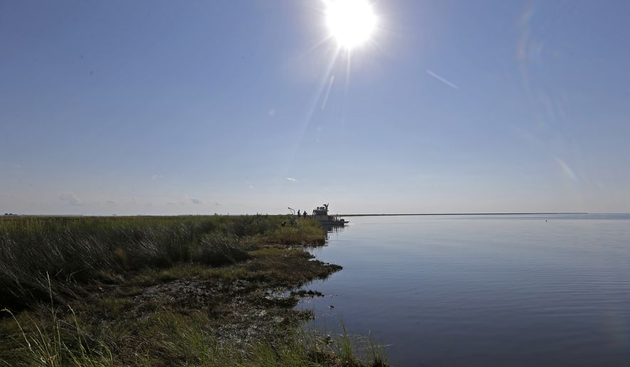 """FILE - In this Sept. 27, 2013 file photo, the shoreline of Bay Jimmy, which was heavily impacted by the Deepwater Horizon oil spill, is seen in an area that has tar mats and oozing crude oil on the marsh platform, in Plaquemines Parish, La. This year's Gulf of Mexico """"dead zone"""" is surprisingly small, but the oxygen-depleted water rose higher toward the surface than usual, scientists said Tuesday, July 31, 2018. (AP Photo/Gerald Herbert, File)"""