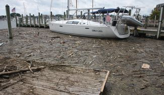 Debris washed into Maryland waters from record rainfall accumulates around a sailboat in Annapolis, Md., on Wednesday, Aug. 1, 2018. Maryland Gov. Larry Hogan said he will raise the issue of upstream states failing to take responsibility for pollution pouring into the Chesapeake Bay at a meeting next week of representatives from six states in the bay's watershed. (AP Photo/Brian Witte)