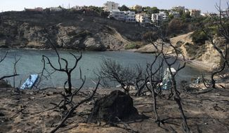 People swim at a beach in Rafina, east of Athens, Wednesday, Aug. 1, 2018, ten days after the the wildfire. The bodies of 76 people killed by Greece's deadliest wildfire in decades have been identified, authorities said Tuesday, as forensic experts kept working to identify more remains recovered from the charred resort area. (AP Photo/Thanassis Stavrakis)