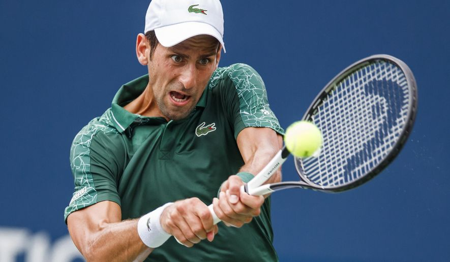 Novak Djokovic, of Serbia, returns a shot to Mirza Basic, of Bosnia, during the Rogers Cup men's tennis tournament in Toronto, Tuesday, Aug. 7, 2018. (Mark Blinch/The Canadian Press via AP)