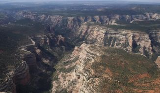 FILE - In this May 8, 2017, file photo, Arch Canyon within Bears Ears National Monument in Utah is viewed. The U.S. government is issuing draft proposals for how it would like to manage two national monuments in Utah that were significantly downsized by President Donald Trump in 2017 in a move that angered conservation and tribal groups and triggered lawsuits. (Francisco Kjolseth/The Salt Lake Tribune via AP, File)