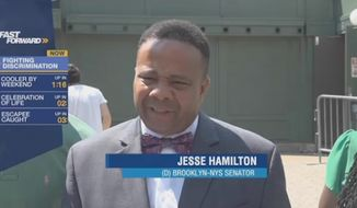 New York state Sen. Jesse Hamilton, a Democrat, wants to make calls to the police on law-abiding black people a hate crime. (News 12)