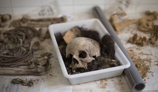 A skull with other bones of a victim's body is classified by anthropologists following an exhumation of a mass grave at the cemetery of Paterna, near Valencia, Spain, Tuesday, Aug. 28, 2018. Archaeologists unearth the remains of some of the 100 people believed to have been executed by the Franco regime near Valencia at the end of Spain's Civil War eight decades ago. The process of exhuming some 130,000 victims from Civil War-era mass graves scattered across the country is gaining momentum under the new center-left government. (AP Photo/Emilio Morenatti)