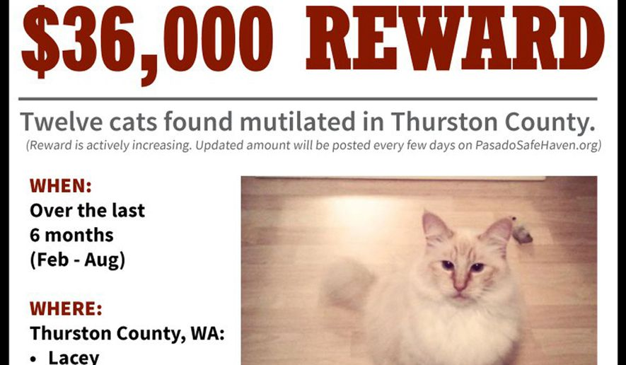 Serial cat killer 13th mutilated animal found in tacoma washington serial cat killer 13th mutilated animal found in tacoma washington area washington times solutioingenieria Choice Image