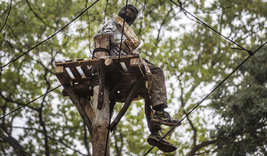 An activist sits on a stand put up as obstacle in the Hambach forest near Kerpen, western Germany, Thursday, Sept. 13, 2018, which is occupied by protestors to stop from being chopped down for a lignite strip mine. (Christoph Reichwein/dpa via AP)