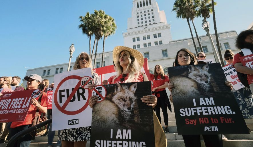 Margo Paine, center, joins protesters with the People for the Ethical Treatment of Animals (PETA) holding signs to ban fur in Los Angeles prior to a news conference at Los Angeles City on Tuesday, Sept. 18, 2018. Los Angeles would become the largest city in the U.S. to ban the sale of fur products if the City Council approves a proposed law backed by animal activists who say the multibillion-dollar fur industry is rife with cruelty. (AP Photo/Richard Vogel)