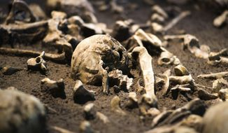 The Sept. 20, 2018 photo shows human skulls and bones of the battle of Tollensetal about 1250 BC. displayed at an archeological exhibition at the Martin-Gropius-Bau museum in Berlin. The new exhibition showcasing more than 1,000 major archaeological finds from the past 20 years shows reveals how Germany has been at the heart of European trade, migration, conflict and innovation since the Stone Age. The exhibition runs from Sept. 21, 2018 until Jan. 6, 2019. (AP Photo/Markus Schreiber)