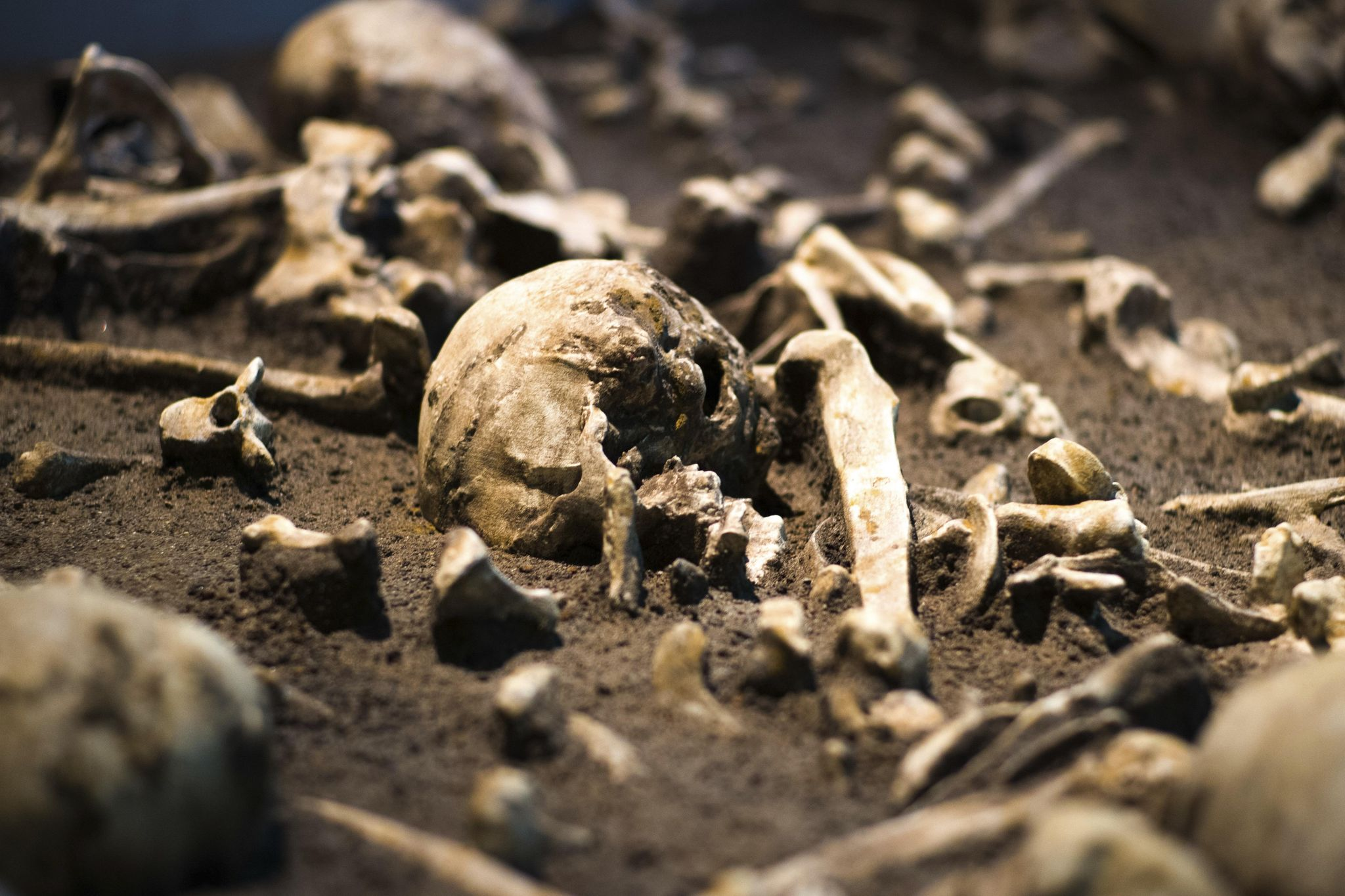Ancient treasures on show in Germany reveal turbulent past - Washington Times