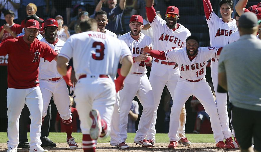 Los Angeles Angels teammates welcome Taylor Ward to home plate on his two-run home run, driving in Shoehi Ohtani, right rear, that gave the Angels a 5-4 walk-off win over the Oakland Athletics in the ninth inning of a baseball game in Anaheim, Calif., Sunday, Sept. 30, 2018. (AP Photo/Reed Saxon)