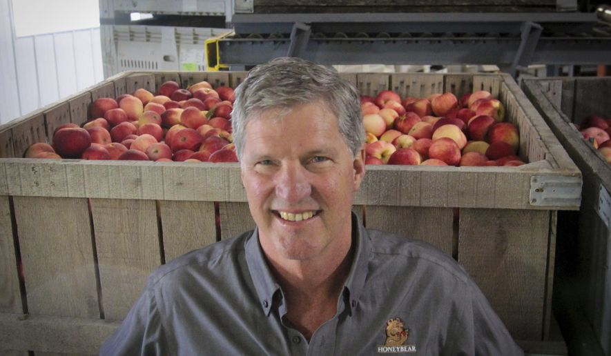 Fred Wescott, president of Wescott Agri Products, stands before a bin of apples at his fruit processing facility in Elgin, Minn. (Brian Todd/The Rochester Post-Bulletin via AP)