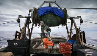 FILE - In this April 23, 2016, file photo, Elijah Voge-Meyers carries cod caught in the nets of a trawler off the coast of New Hampshire. American fishermen are slated to lose thousands of pounds of valuable fishing quota under a new catch share agreement with Canada for the 2019 fishing year, that was approved in September. (AP Photo/Robert F. Bukaty, File)