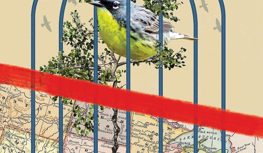 Government Land Grab Illustration by Linas Garsys/The Washington Times