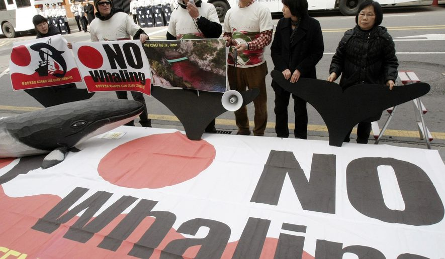 FILE - In this March 19, 2010, file photo, environmentalists stage a rally against Japan's whaling in front of the Japanese Embassy in Seoul, South Korea. Japan says it will revise one of its two major research whaling programs after an international organization said bringing home and selling sei whale is illegal.  (AP Photo/Ahn Young-joon, File)
