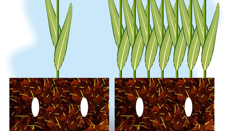 Illustration on the benefits of agicultural progress by Alexander Hunter/The Washington Times