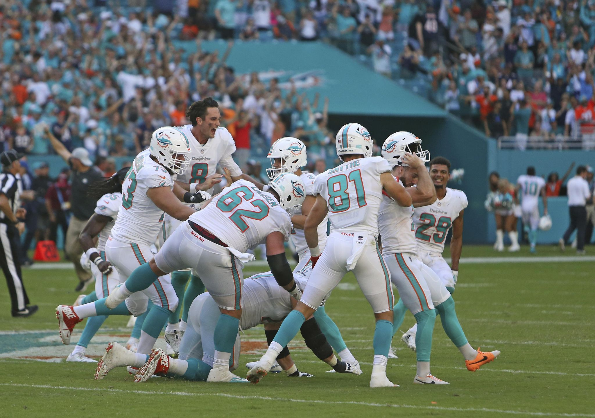 Bears_dolphins_football_59046_s2048x1440