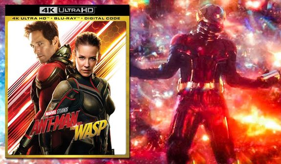 "Ant-Man visits the quantum realm in ""Ant-Man and The Wasp: Cinematic Universe Edition,"" now available on 4K Ultra HD from Walt Disney Studios Home Entertainment."