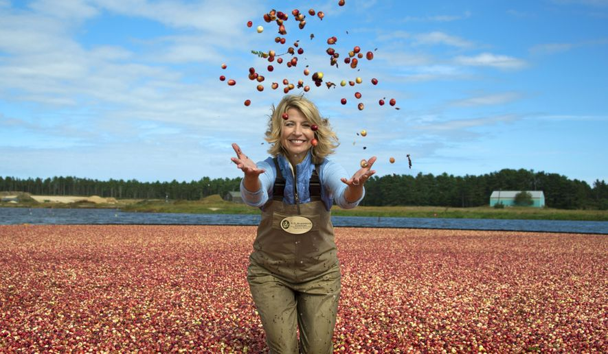 """This image released by PBS shows host Samantha Brown in a cranberry bog in Wareham, Mass. to promote the three-night public TV series, """"AutumnWatch New England,""""  The series will showcase the season's glories, including the great outdoors, food and fall traditions. (PBS via AP)"""