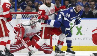 Tampa Bay Lightning's Ryan Callahan is defended against by Detroit Red Wings' Luke Witkowski in front of goaltender Jimmy Howard during the first period of an NHL hockey game Thursday, Oct. 18, 2018, in Tampa, Fla. (AP Photo/Mike Carlson)
