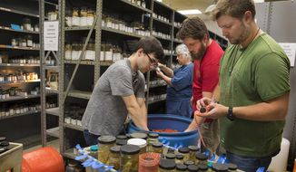 This photo, provided by the University of Louisiana at Lafayette, shows technicians from the Smithsonian Institution's National Museum of Natural History packing specimens from the University of Louisiana at Lafayette Zoological Crustacean Collection on Wednesday, Oct. 17, 2018, in Billeaud Hall on the University's campus. The Smithsonian has accepted the collection into its holdings. From left are Adam Stergis, Karen Reed, Simon Pecnik and Marshall Boyd. (Doug Dugas/University of Louisiana at Lafayette via AP)