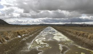 FILE - In this March 10, 2010, file photo, an irrigation canal stands dry on the Klamath Reclamation Project near Klamath Falls, Ore. President Donald Trump has ordered the government to streamline regulations that he says are hindering work on four major water projects in the Western United States. Trump signed a memorandum Friday, Oct. 19,2018 aimed at helping the Central Valley Project and the California State Water Project in California, the Klamath Irrigation Project in Oregon and the federal Columbia River system in the Pacific Northwest. (AP Photo/Jeff Barnard, File)