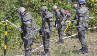 FILE - In this Oct. 2, 2018, file photo, South Korean soldiers search for landmines inside the Demilitarized Zone (DMZ) that separates the two Koreas in Cheorwon, South Korea. South Korea on Thursday, Oct. 25, 2018, said it has discovered what could be Korean War remains at a frontline area where it's jointly clearing mines with North Korea. (Song Kyung-Seok/Pool Photo via AP. File)