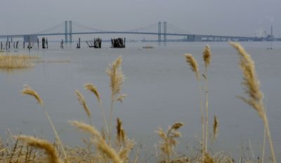 In this photo taken on Feb. 26, 2009, the Delaware River is seen, with the Delaware Memorial Bridge in the background, from the banks of New Castle, Del.  (AP Photo/Matt Rourke)