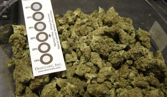 """In this Wednesday, Oct. 17, 2018 photo a humidity indicator rests in a bowl of a strain of cannabis called """"Walker Kush"""" at New England Treatment Access medical cannabis dispensary, in Northampton, Mass. The Walker Kush strain of cannabis is intended for legal recreational consumption once cannabis products can be sold legally in the state. Within days perhaps, the medical marijuana dispensary in Northampton expects to receive the final go-ahead to throw its doors open to anyone 21 or older who wants to purchase cannabis products ranging from flower to edibles, creams and even suppositories. (AP Photo/Steven Senne)"""
