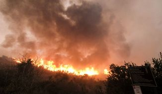 The Woolsey fire burns in Malibu, Calif., Friday, Nov. 9, 2018. (AP Photo/Ringo H.W. Chiu)