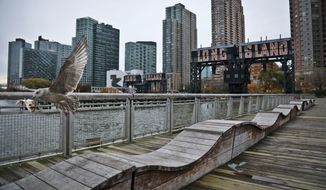 "A sea gull flies off holding fish scraps near a former dock facility, with ""Long Island"" painted on old transfer bridges at Gantry State Park in the Long Island City section of the Queens Borough in New York, Tuesday, Nov. 13, 2018. Amazon announced Tuesday it has selected the Queens neighborhood as one of two sites for its headquarters. (AP Photo/Bebeto Matthews)"