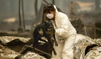A search and rescue worker, looking for Camp Fire victims, carries Susie Q. to safety after the cadaver dog fell through rubble at the Holly Hills Mobile Estates on Wednesday, Nov. 14, 2018, in Paradise, Calif. (AP Photo/Noah Berger)