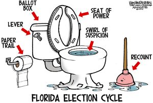 Florida Election Cycle