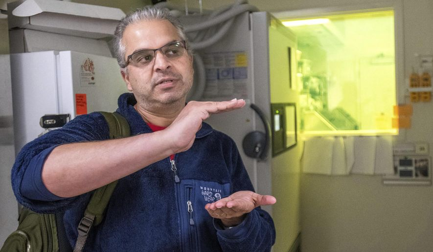 In this Oct. 30, 2018 photo, Ripan Malhi, a professor in anthropology, talks about his  research outside the clean room where he collected canine DNA in the Carl R. Woese Institute for Genomic Biology on the University of Illinois campus in Urbana, Ill. Malhi says that the genetic code evidence they have gathered tells us not only about dogs, but potentially about humans who crossed a land bridge that once existed between Siberia and Alaska. (Robin Scholz/The News-Gazette via AP )